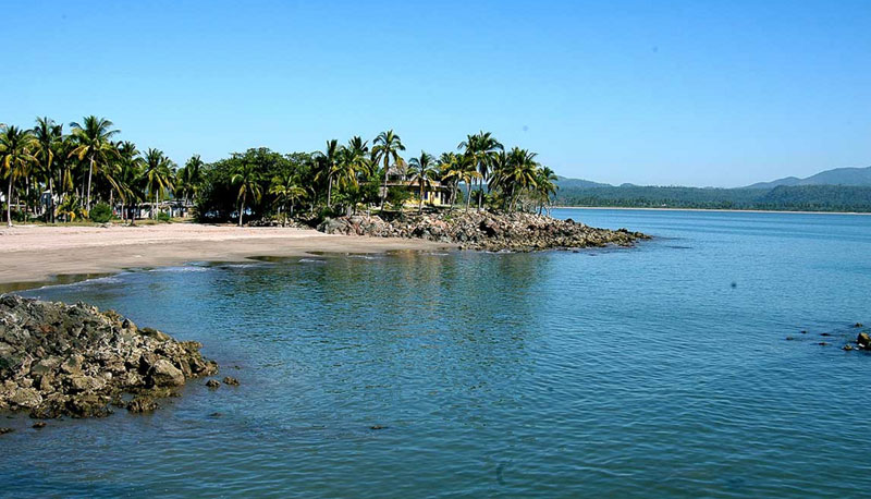 manglares en la tovara tour san blas nayarit