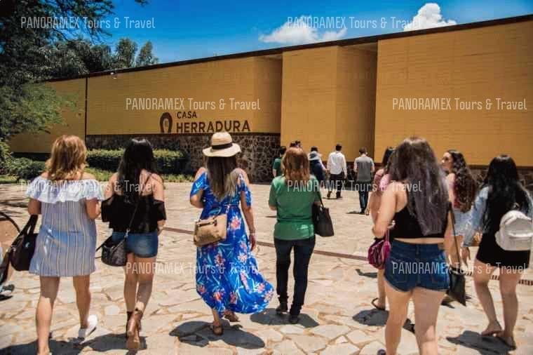 Tequila Trail Tour (Herradura Distillery)