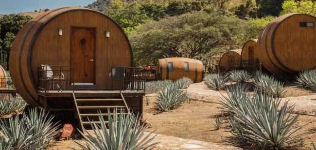 Ruta del Tequila (La Cofradia)